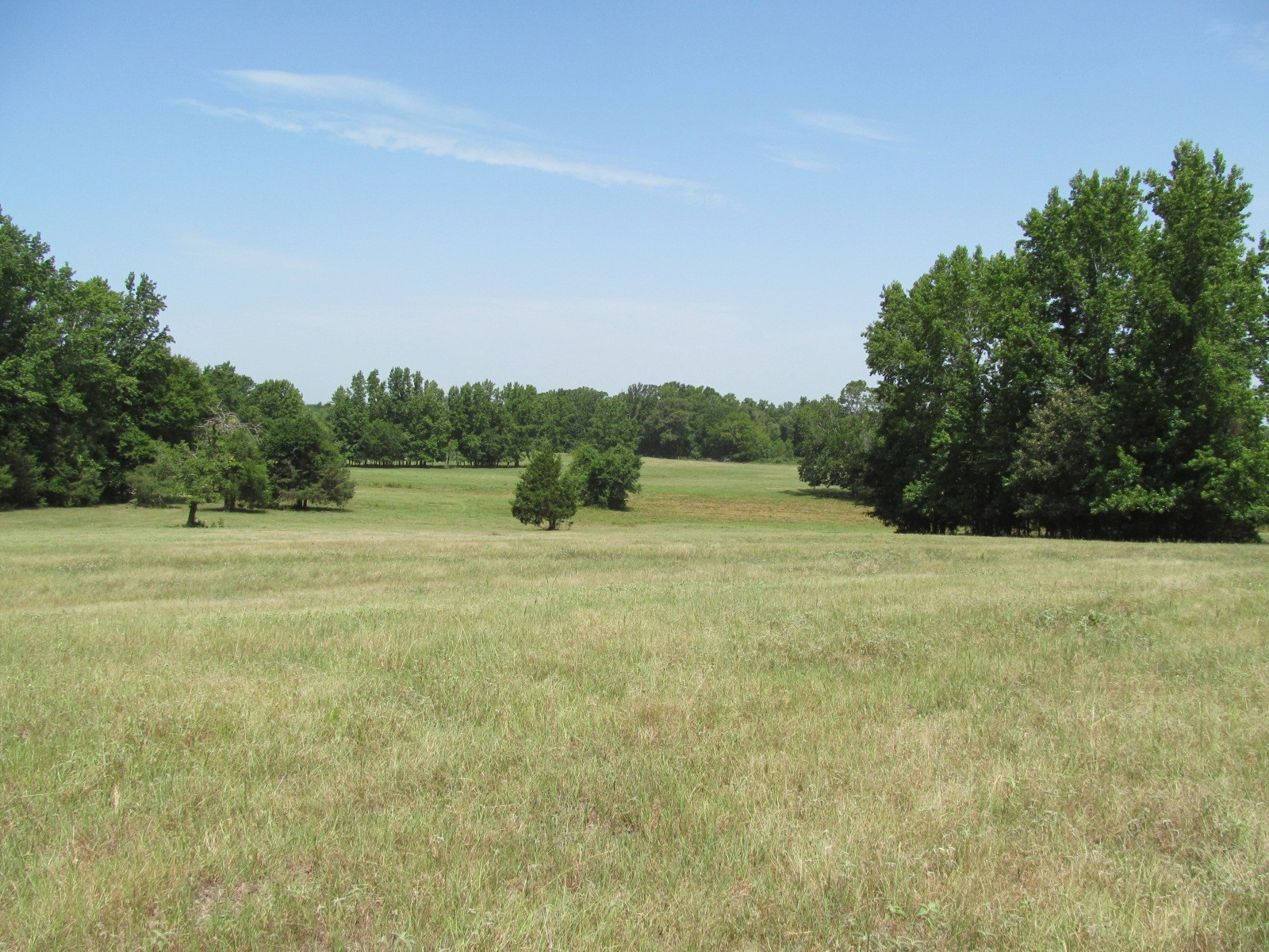 83 ACRES FOR SALE IN WOOD COUNTY - WINNSBORO, TEXAS