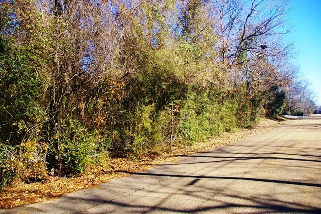 1.10 Acre Residential Lot for Sale McComb, MS