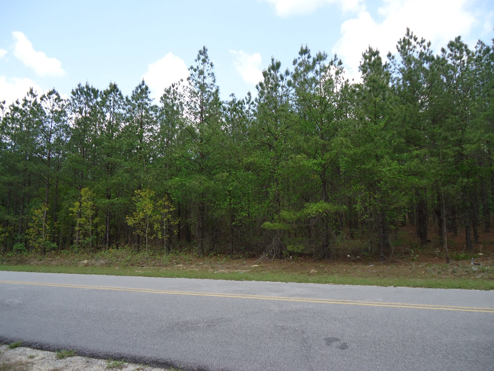 5.7 +/- ACRES OF BEAUTIFUL WOODED PROPERTY