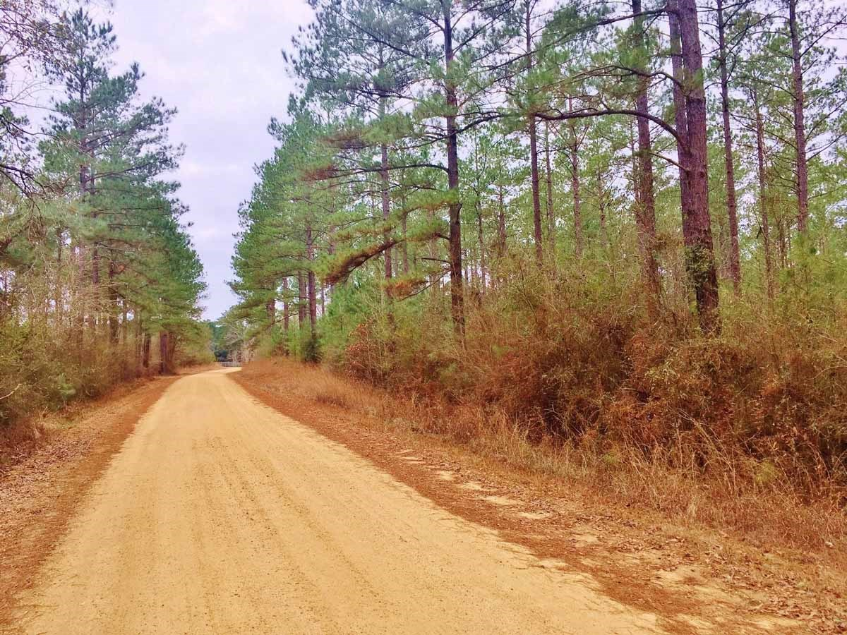 Land for Sale Near Brookhaven, Lincoln County, MS