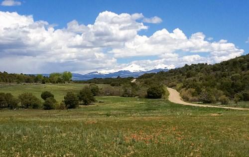 Land For Sale Colorado Acreage Mancos CO Near Durango CO