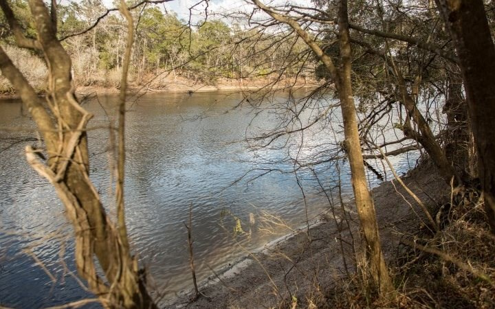 3  Suwannee River Front Acres close to Town!