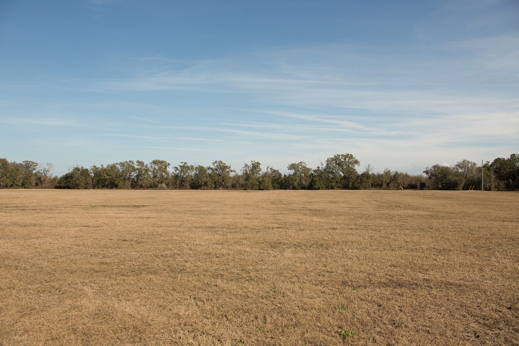 106 Acres For Sale in Mayo, FL