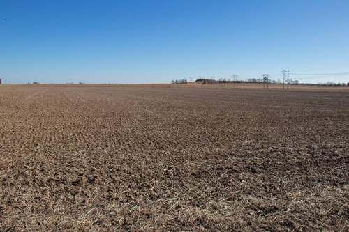 Farm For Sale in Pana Christian County