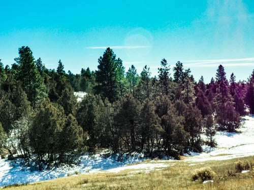 land for sale in chama treed lot with great views easy acces