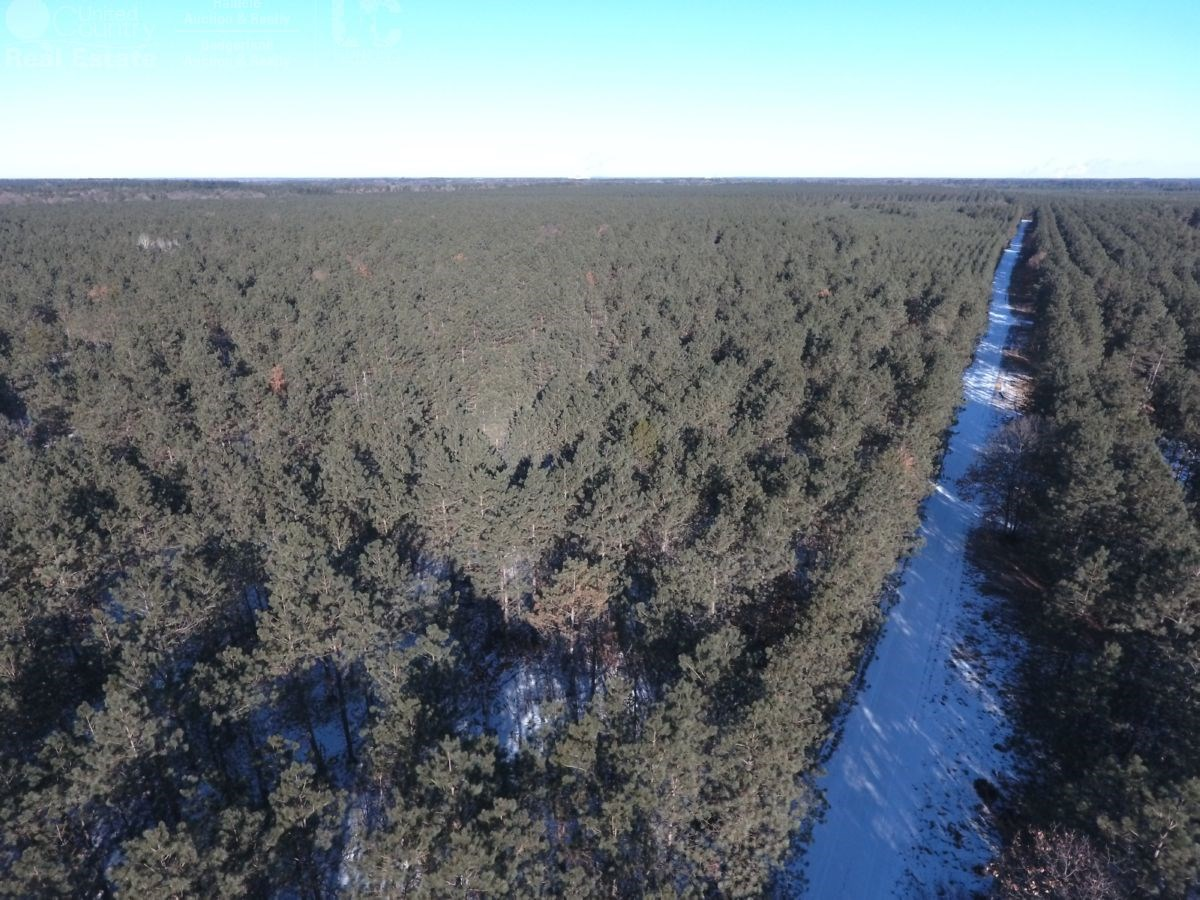 39 acres of Adams County Timber Land for sale