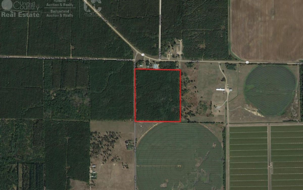 46 acre Timberland tract northern Adams County