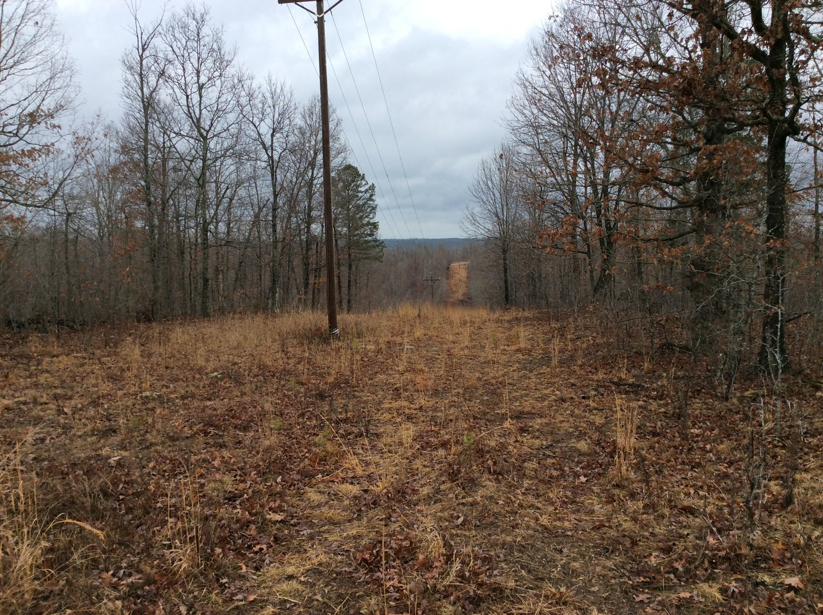 Shannon County Missouri Land For Lease 119 acres
