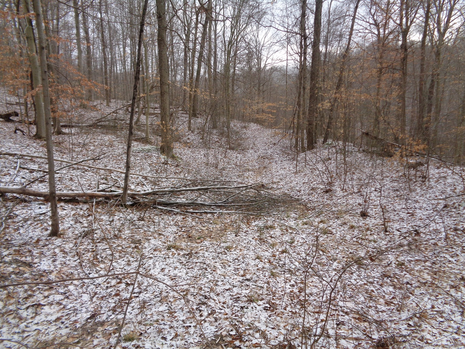 Muskingum County Ohio Wooded Hunting Land for Sale