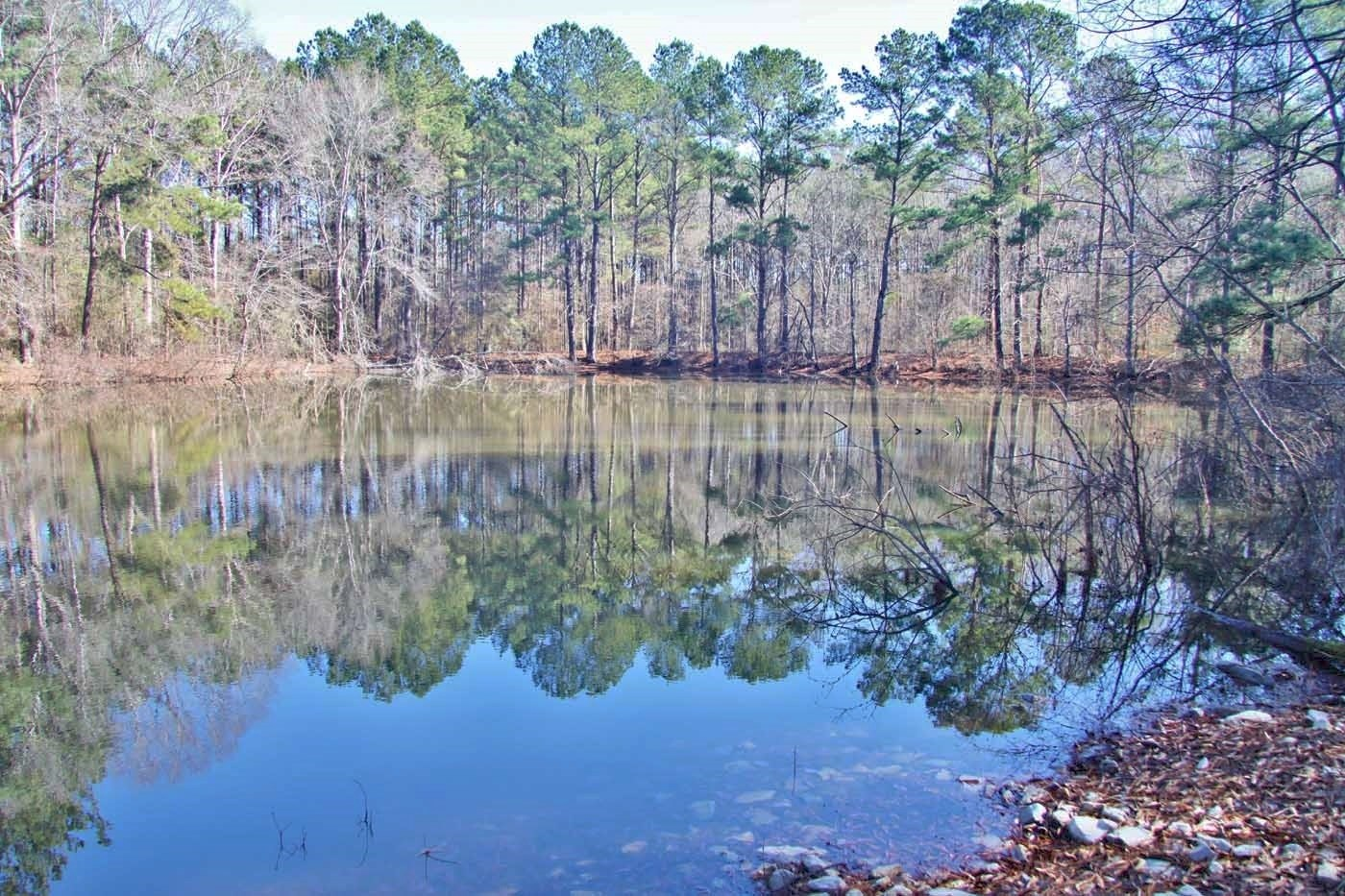 51.85 Acres for Sale Smithdale, Amite County, Southwest MS