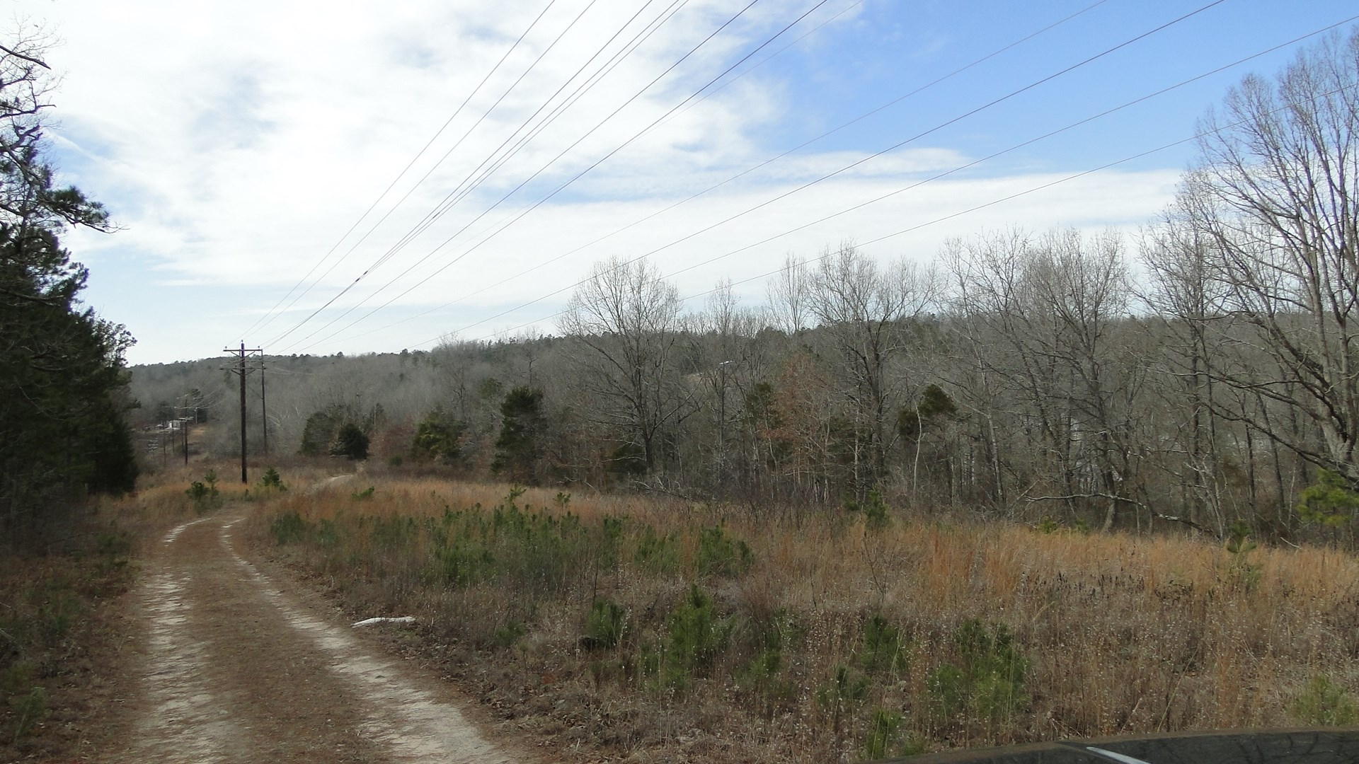 NORTH ARKANSAS VACANT LAND FOR SALE