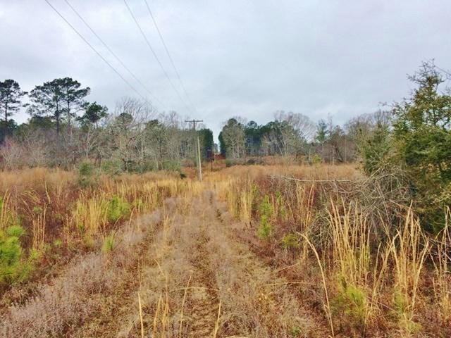 80 Acres House Pond Creek For Sale Magnolia Pike