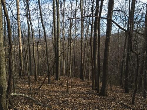 Recreational Land in Pearisburg VA for Sale!