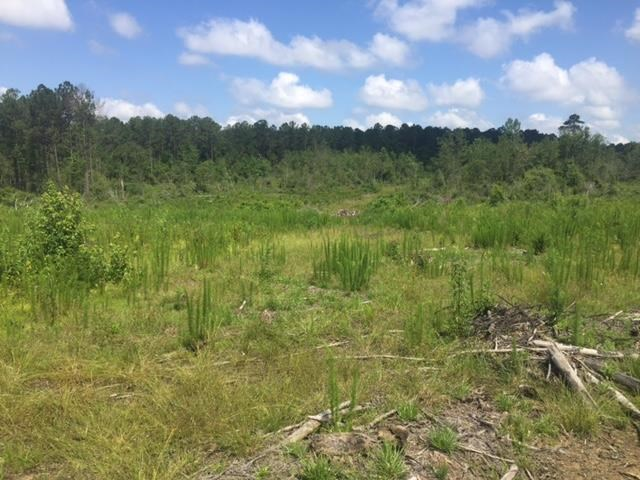 Land for Sale Owner Financing North Pike School District MS