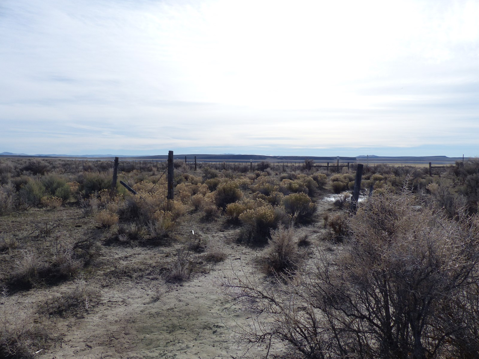ACREAGE FOR SALE SOUTH OF BURNS OR OFF HWY 205