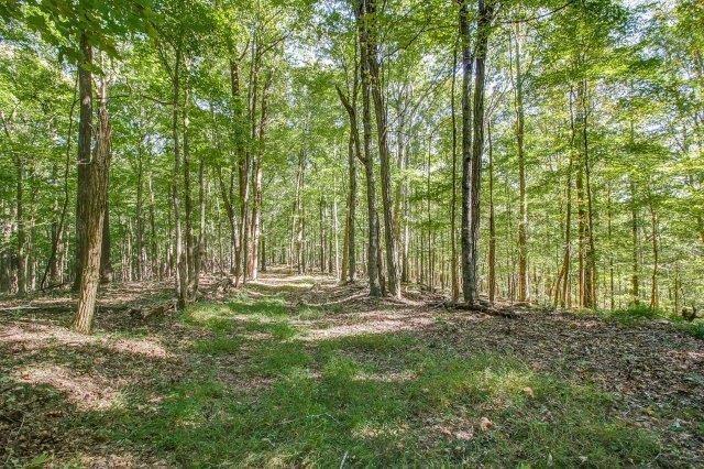 Tennessee Hardwoods