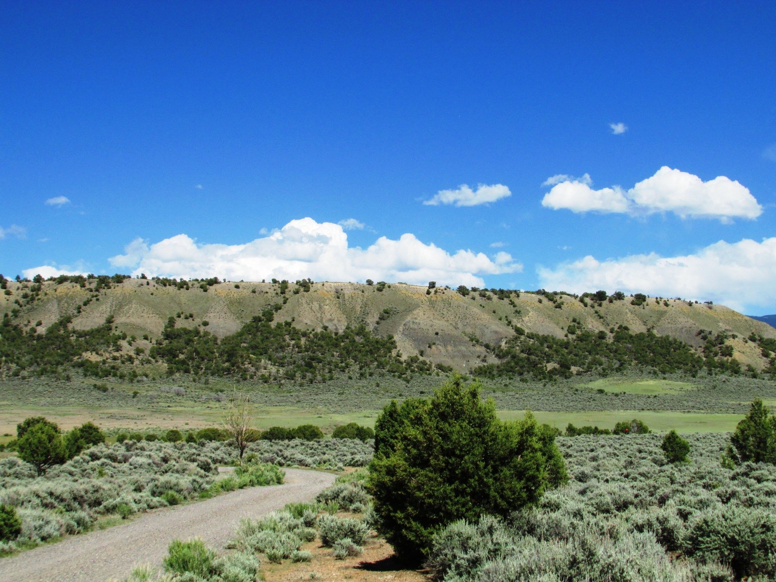 Land For Sale Montrose Colorado