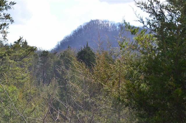 300 ACRES OF BEAUTIFUL MOUNTAIN PROPERTY SNEEDVILLE, TN