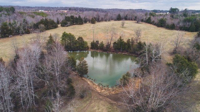 Large Farm Acreage in Halifax VA for Sale!