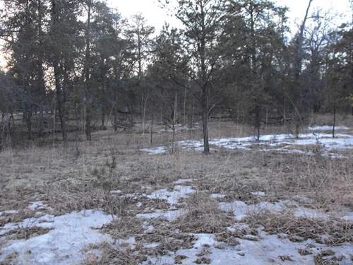 Building Site for sale on Canada Creek Ranch, Atlanta MI