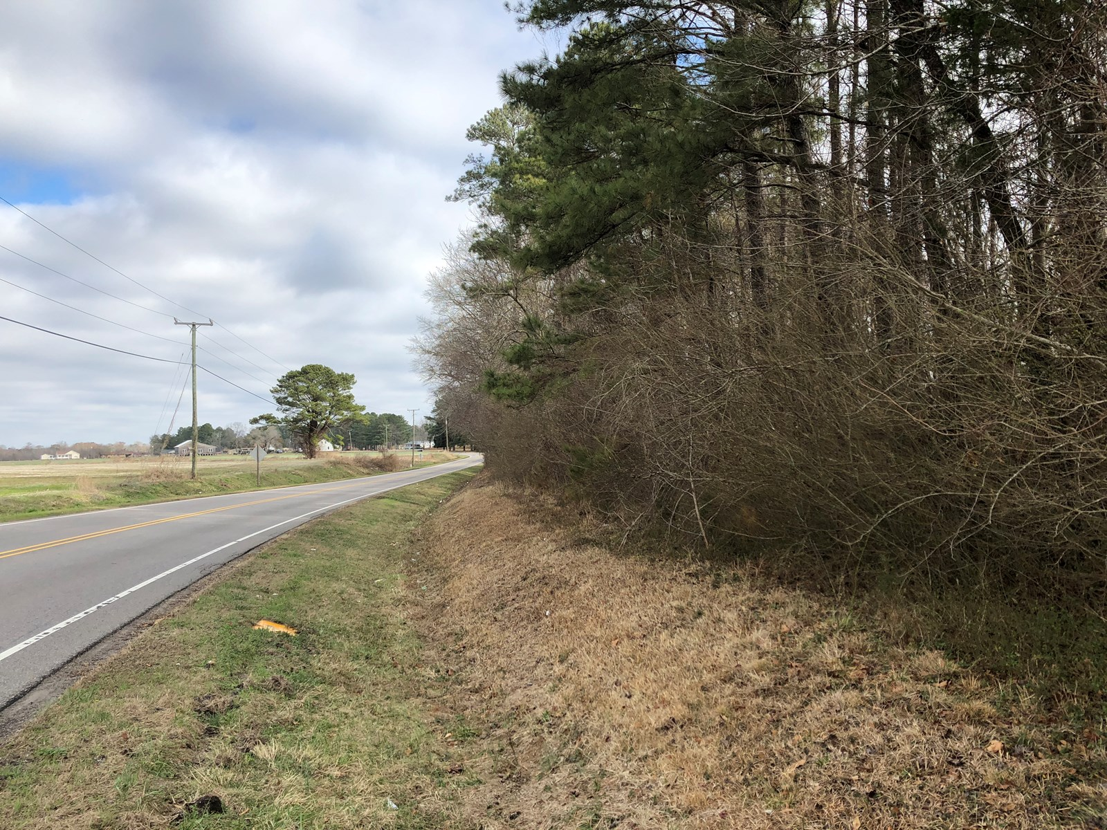 Martin County Buildable Lot, 1.8-acre Jamesville NC