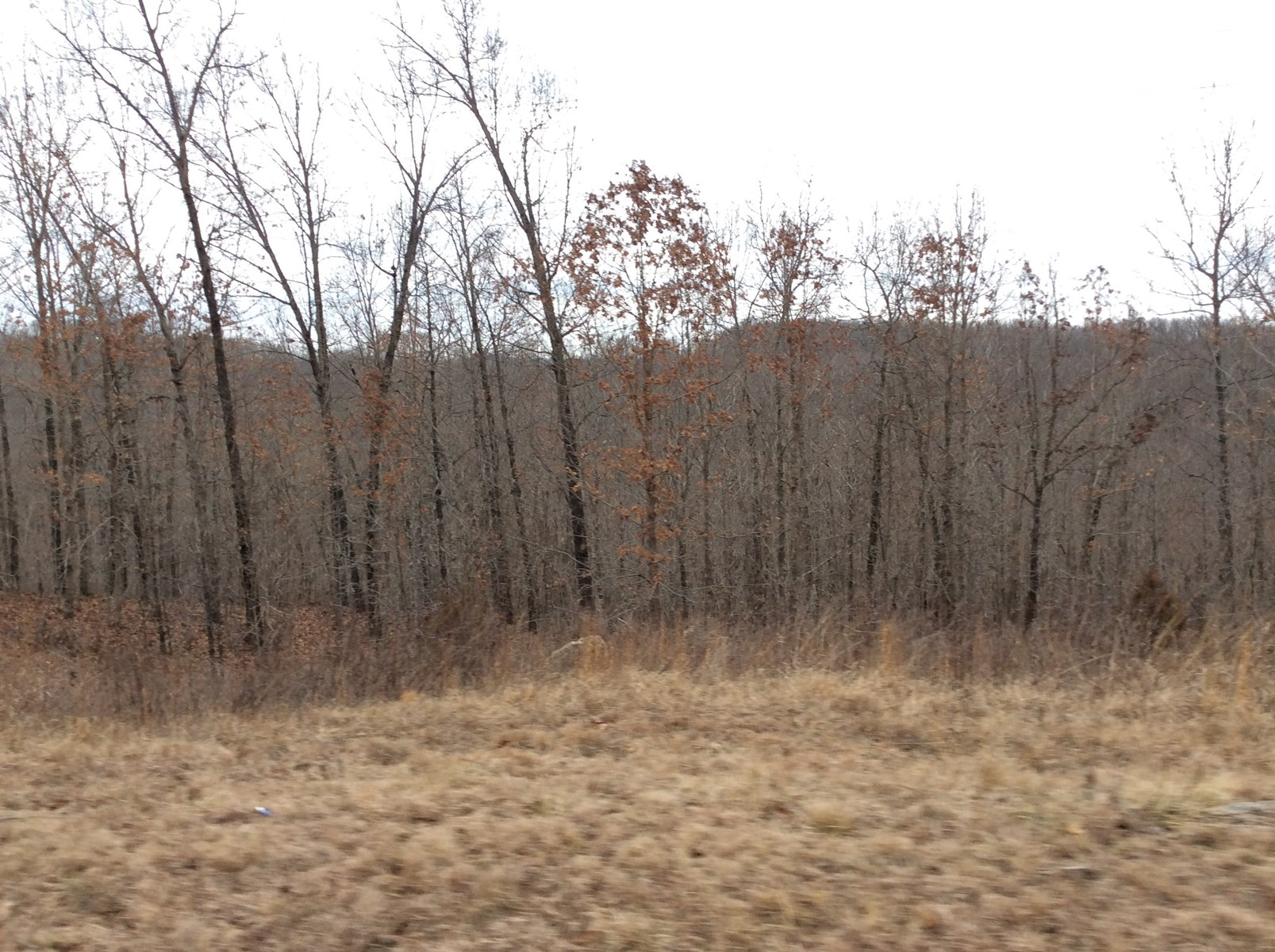 Douglas County Missouri Land for Sale