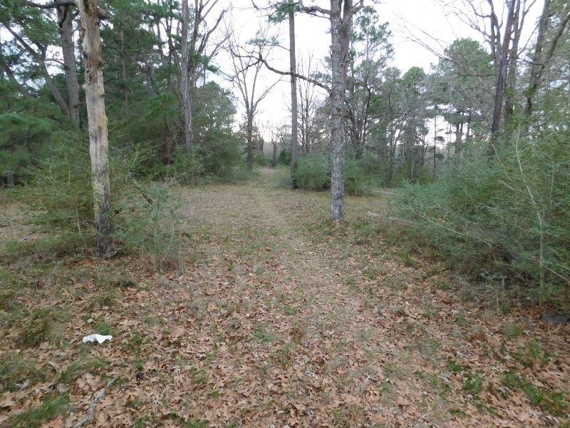 Land For Sale - Buffalo, TX - Leon County, TX