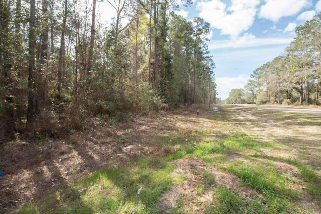 .52 ACRE FOR SALE BELOW GENEVA AL WOODED LOT