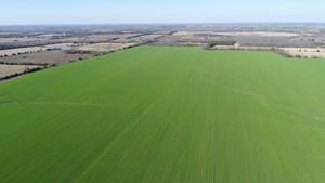LARGE INCOME INVESTMENT FARM FOR SALE PARIS TEXAS