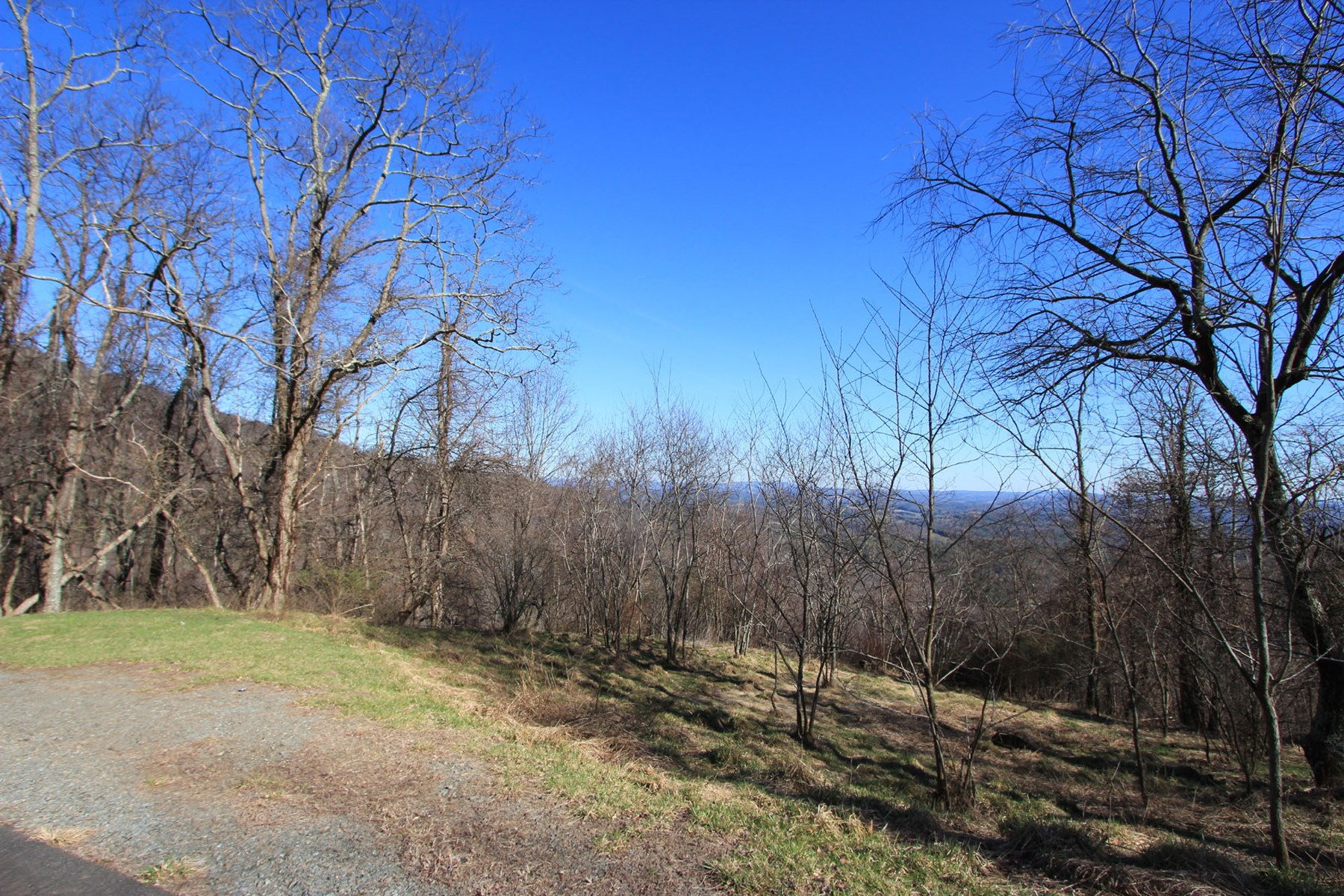 Big View Blue Ridge Mountain Tract in Gated Community