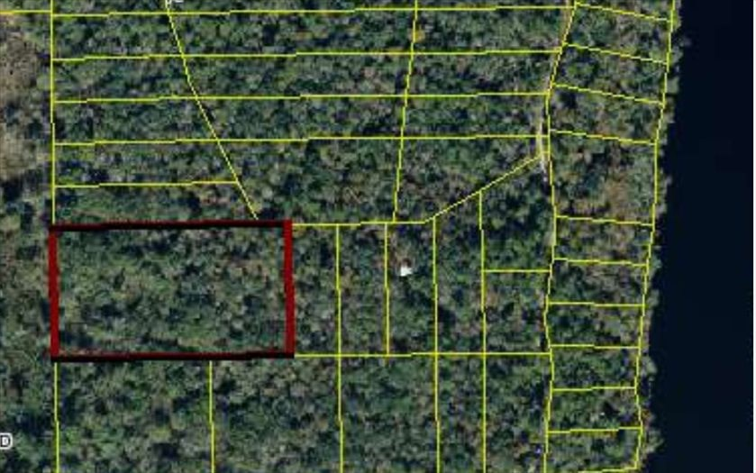 5.6 Acres Near Suwannee River