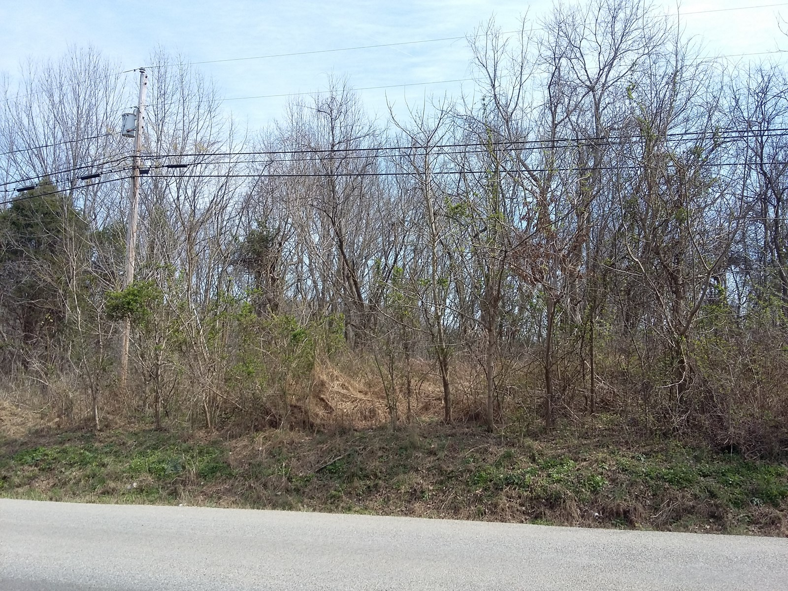 CULLEOKA, TN MAURY COUNTY 50 ACRES LAND ONLY FOR SALE