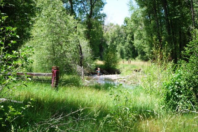 River Frontage Land For Sale Cimarron, Colorado