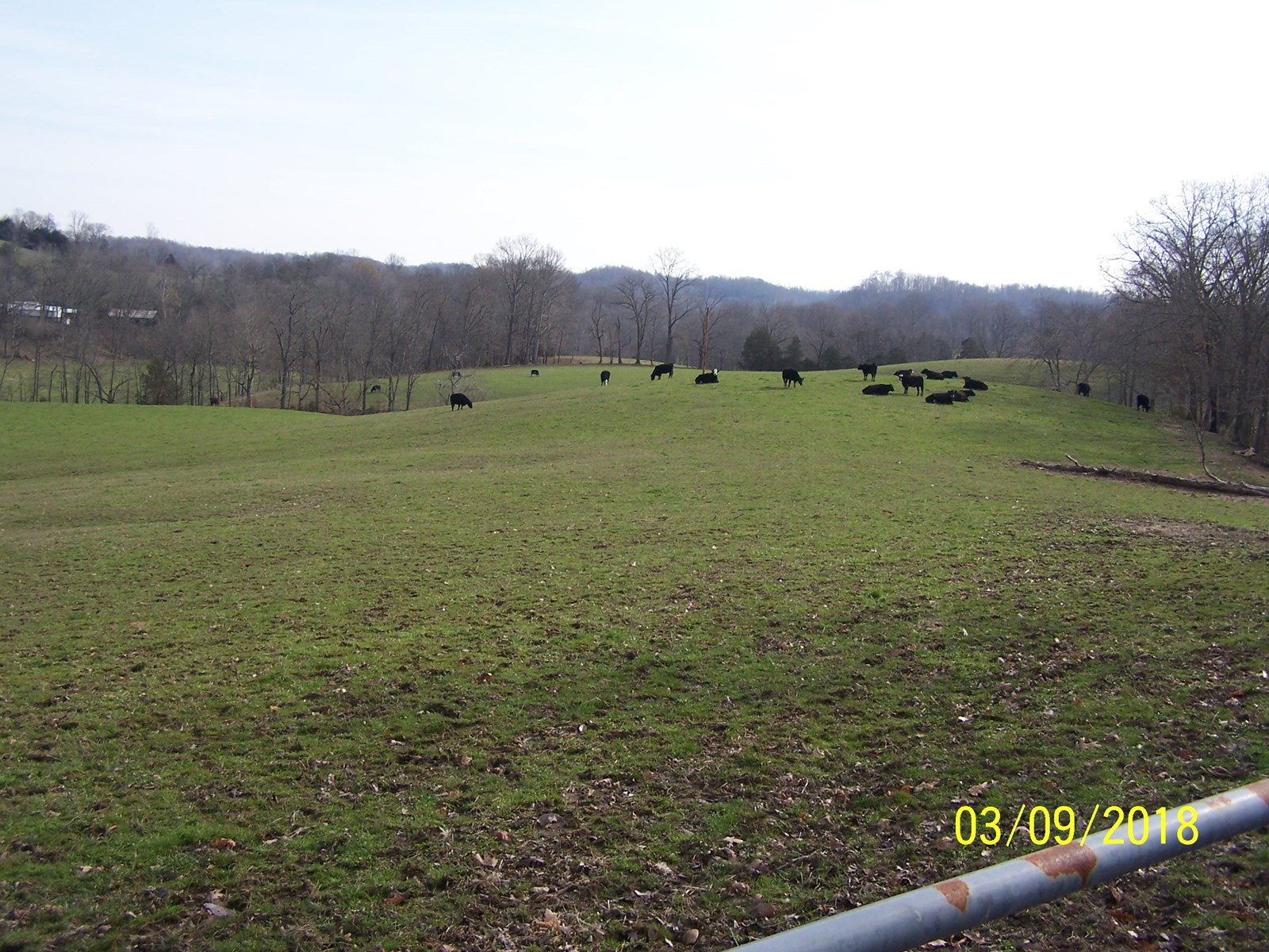 52 FENCED ACRES WITH US 127 FRONTAGE - CASEY COUNTY KENTUCKY