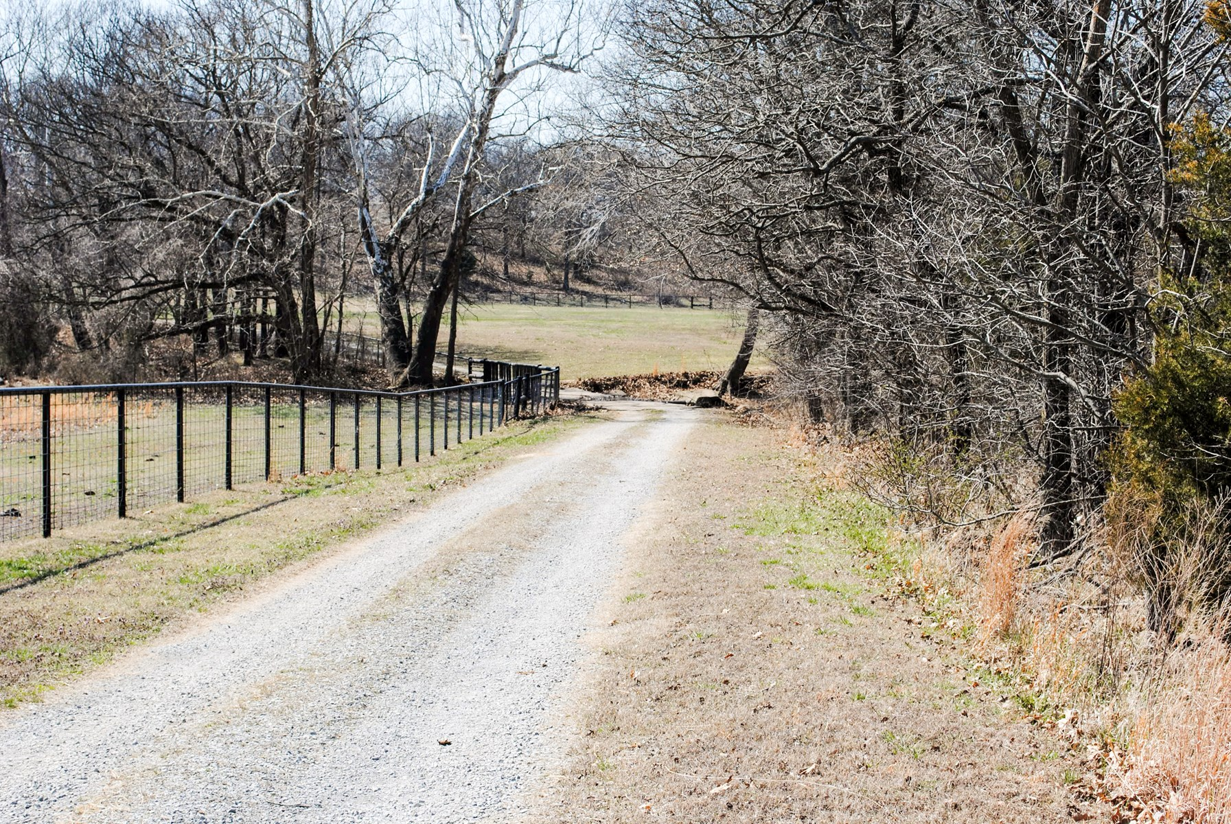 Prime 180 park like acres in Adair School District