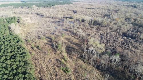 Southern Arkansas Hardwood Bottom Hunting Land for Sale