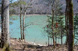 285 ACRES OF MAGNIFICENT CLINCH RIVER/ NORRIS LAKE PROPERTY