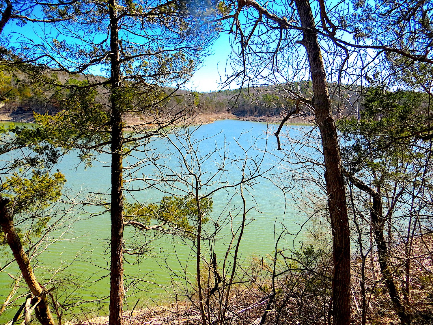 20 Acres for Sale on Lake Norfork
