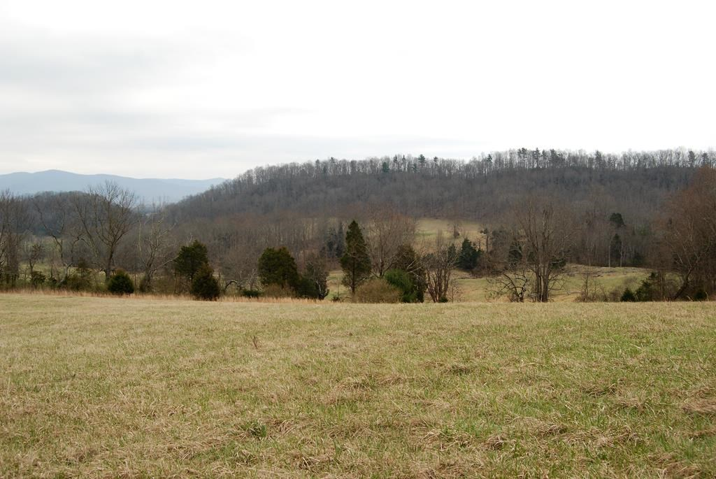 Farm/Mini Farm for sale in Wythe County.