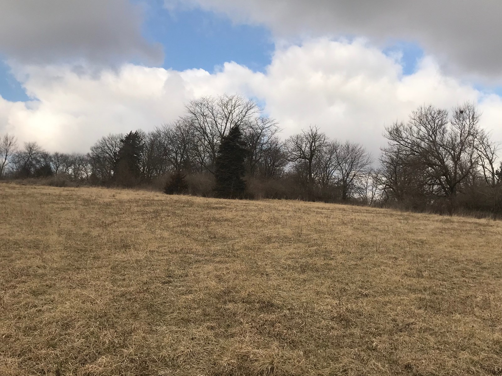 MISSOURI LAND FOR SALE, MARYVILLE MO BUILDING LOT FOR SALE