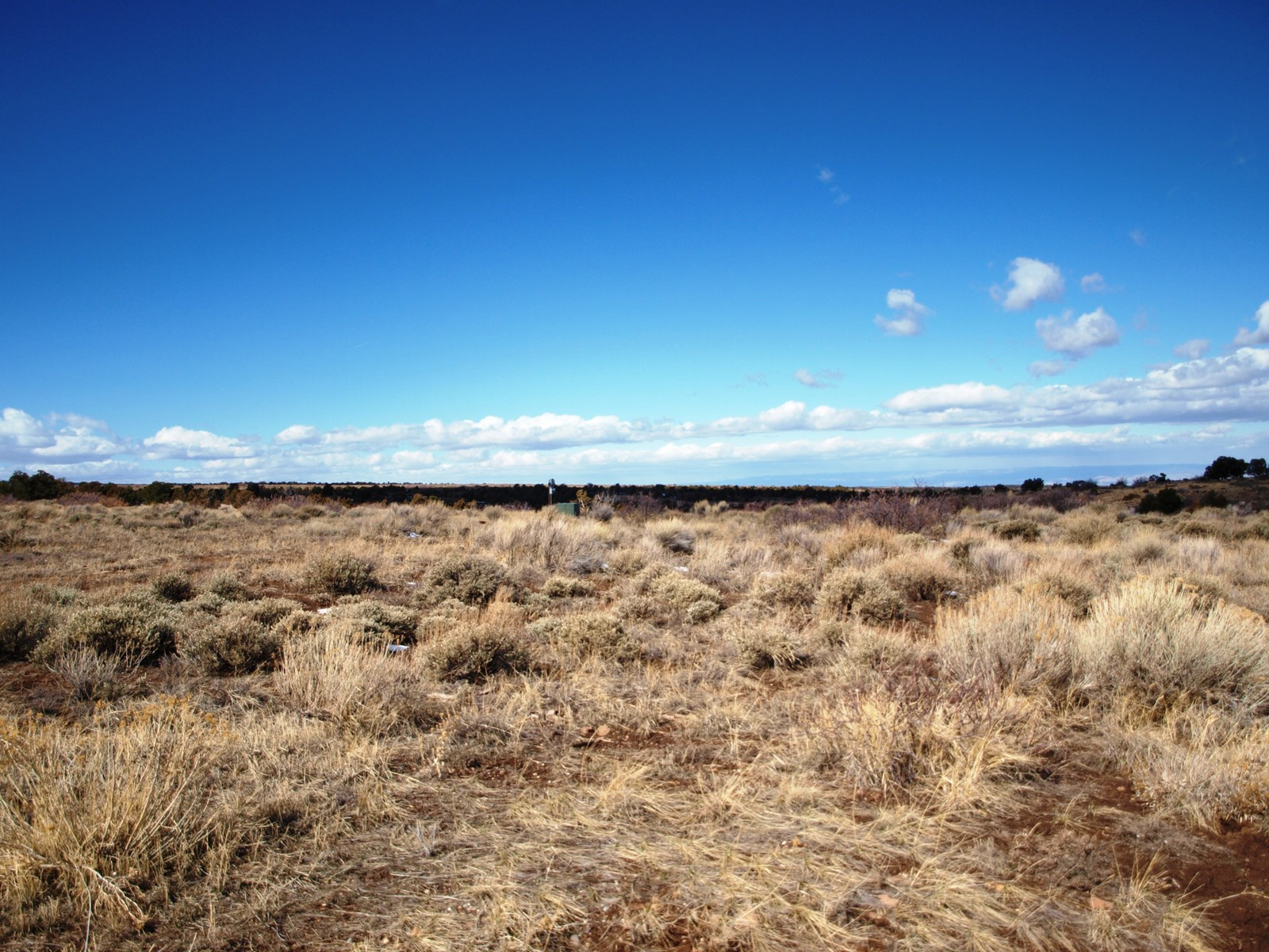 Colorado mountain land for sale, Mesa County