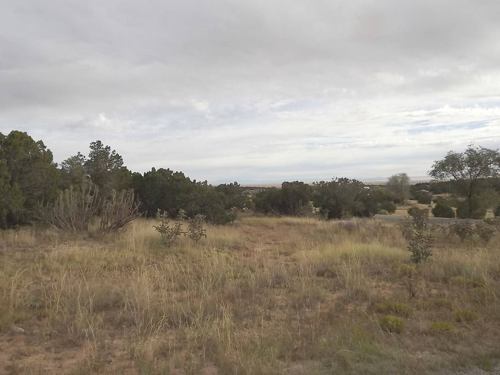 Edgewood NM Residential Building Lot For Sale