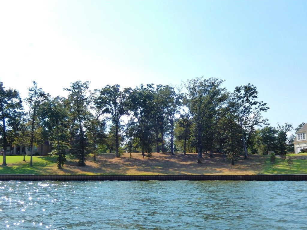 GATED WATERFRONT LOT IN BROWN'S LANDING LAKE PALESTINE TX