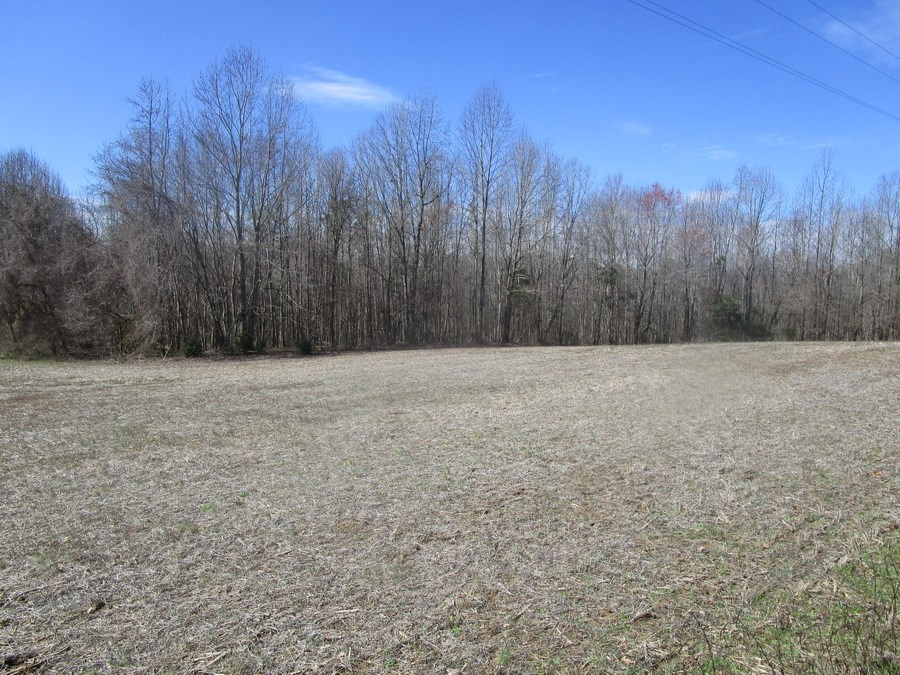 35.13 Ac- Farming, Hunting or Recreation in Lunenburg Co. VA