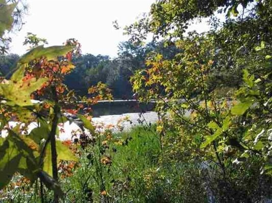 NORTH FLORIDA LAKE FRONT LOT FOR SALE