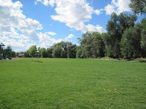 LOT FOR SALE NEWER SUBDIVISION MONTROSE COLORADO