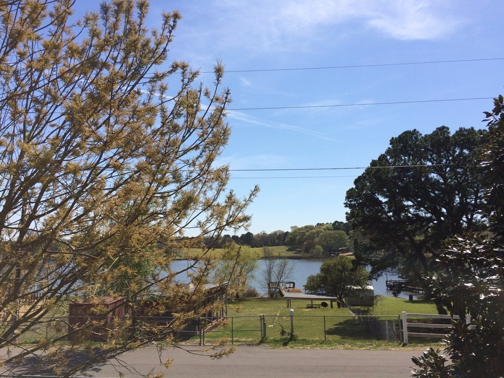 AFFORDABLE HOME FOR FISHING  VACATION LAKE PALESTINE TX
