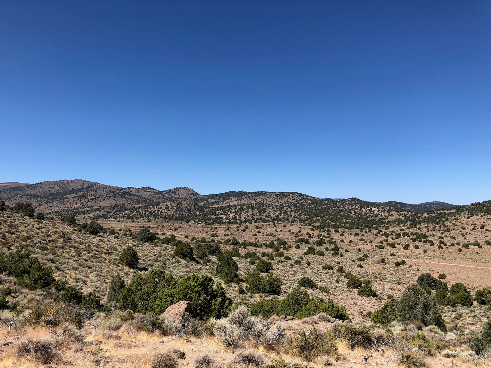 Off Grid Land for sale in NW Nevada near Virginia City NV