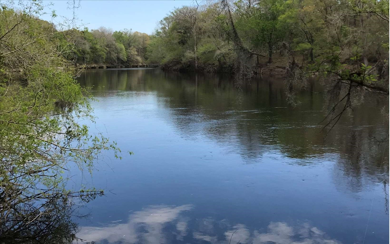 Over 1 Acre on Suwannee River!