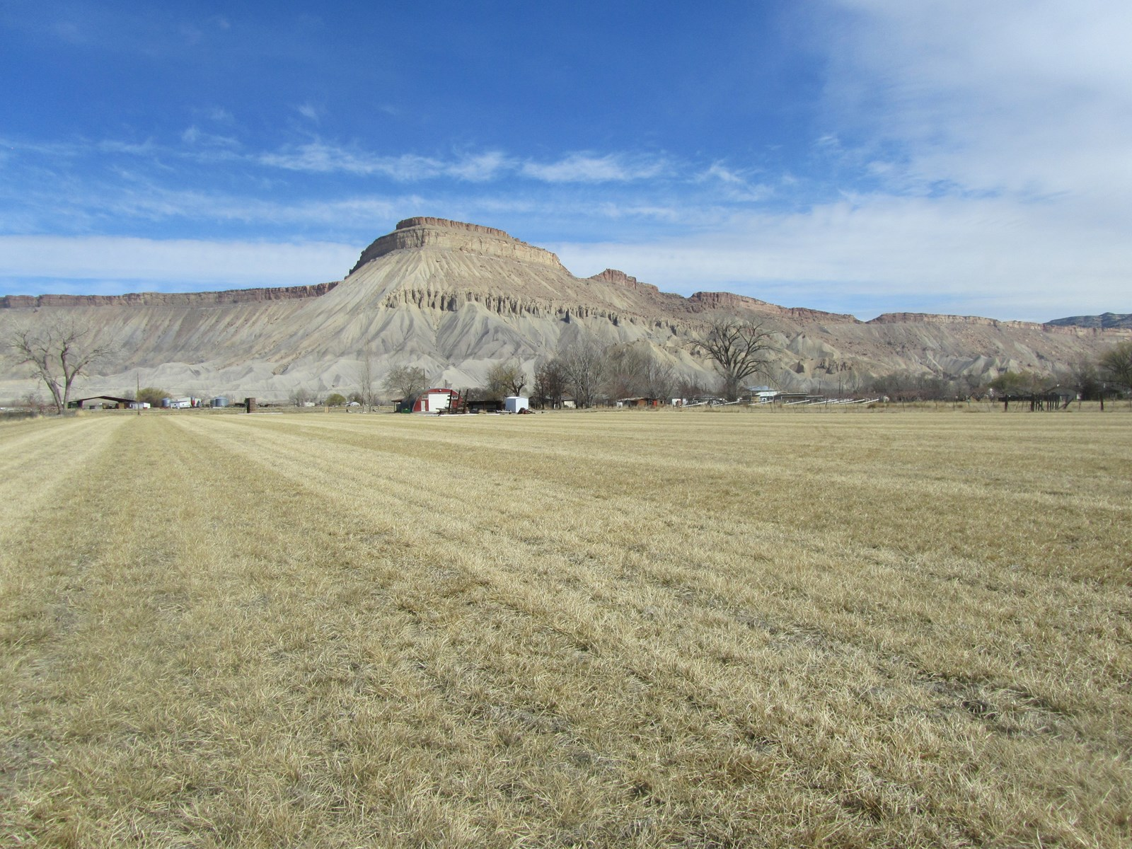 Acreage For Sale with Irrigation near Palisade, Colorado